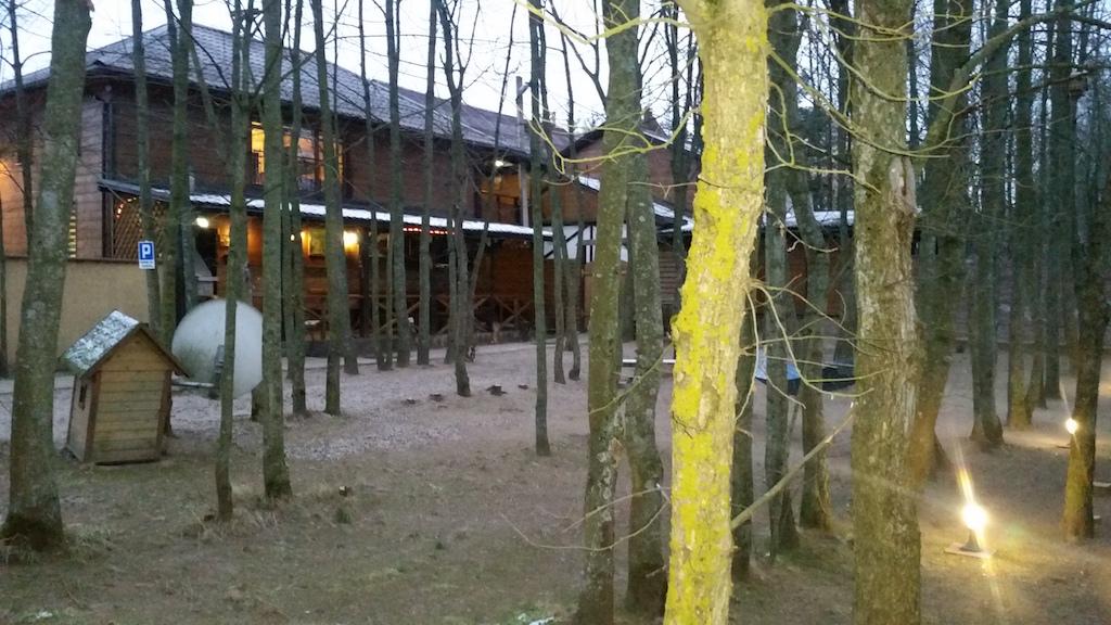 Лес на территории коттеджа