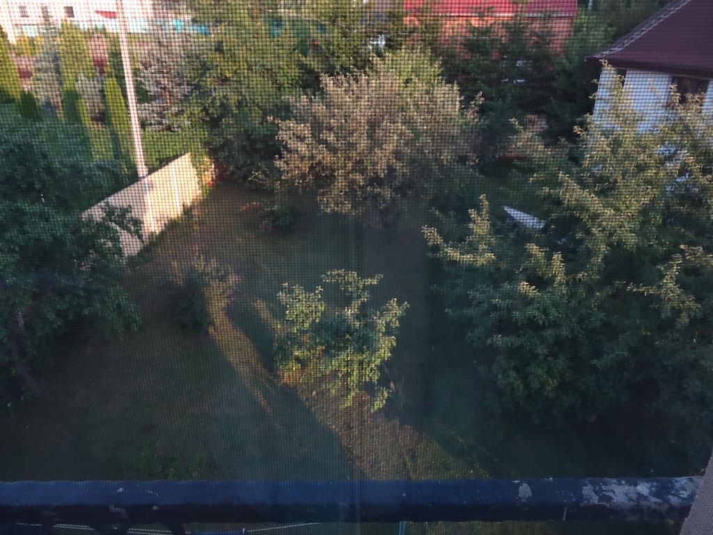 Вид на сад из окна 2 этажа