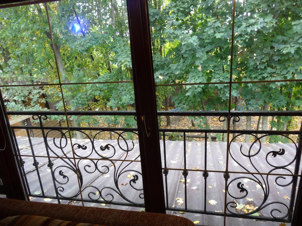 Вид из окна на лес