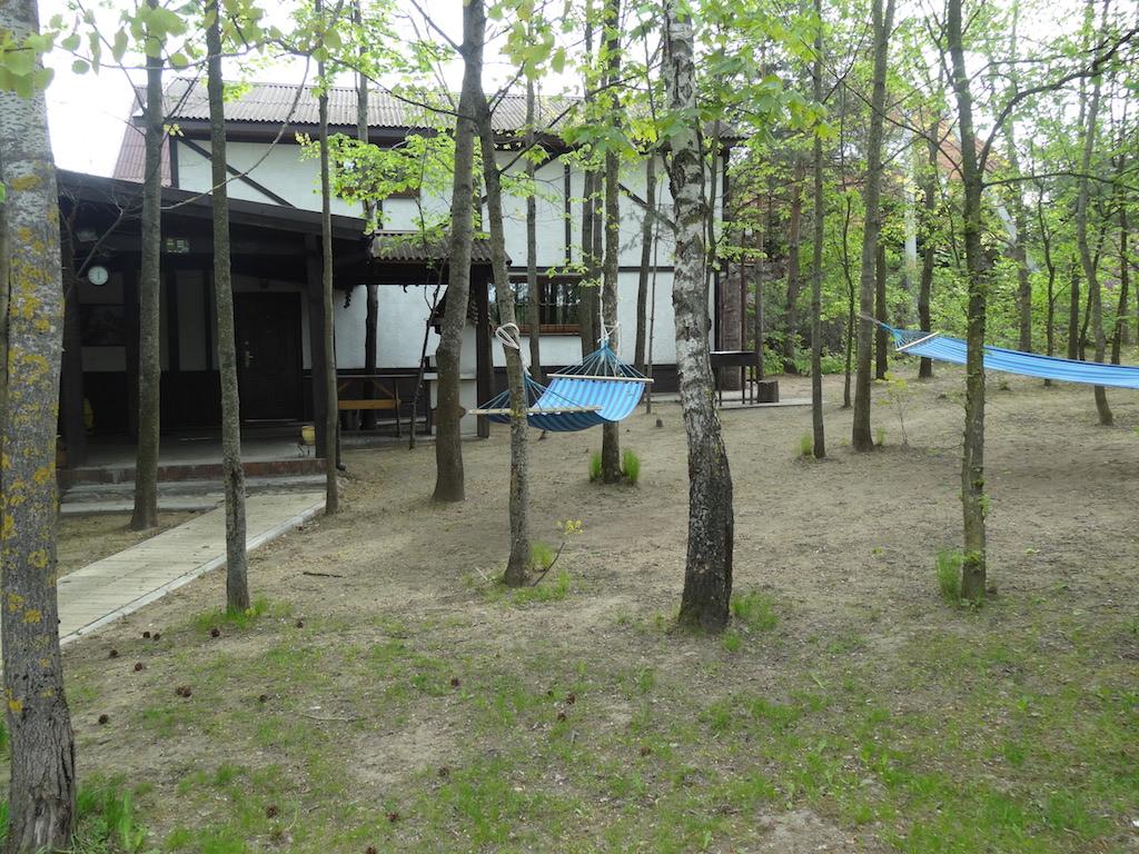 Коттедж расположен в лесу